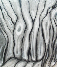 Abstract Silver Metallic Bark : silver metallic color, liquid, flow pattern, abstract bark surface pattern, botanical, pattern symbolism, abstract tree painting#4338, 2005 | Kazuya Akimoto Art Museum